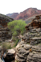 Tapeats Narrows - Bright Angel Trail